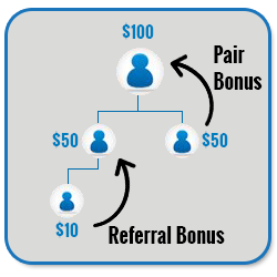 Advance MLM Binary Plan Script pair referral bonus