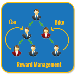 Basic Unilevel Investment MLM Software reward management