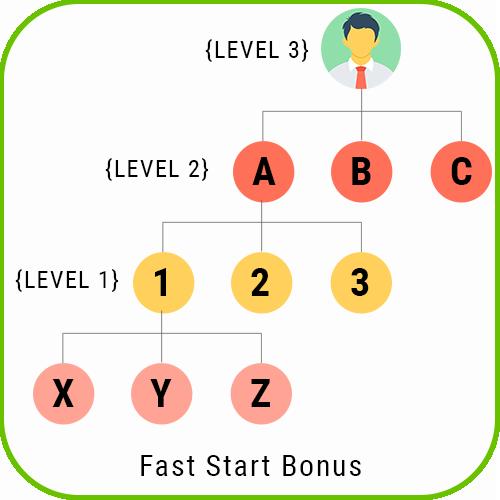 Multilanguage MLM Unilevel Plan Script fast start bonunilevel us