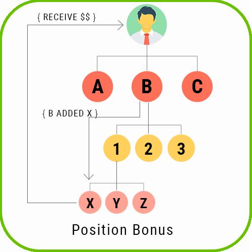 Board MLM Script position bonus