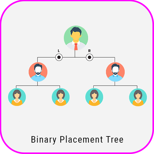 Spillover Binary Plan Software spill over binary pacement tree
